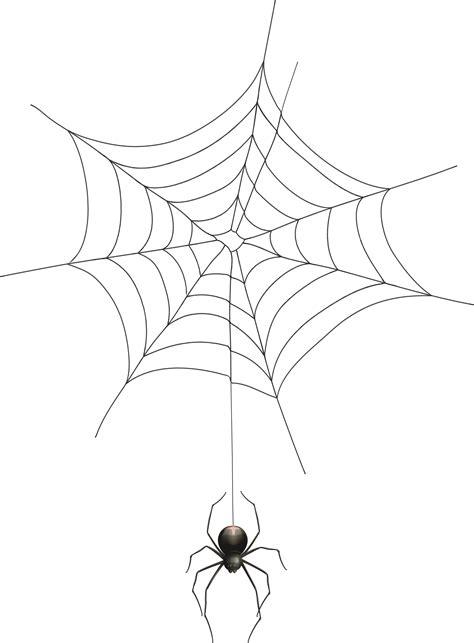 Spider Web Transparent Background Png & Free Spider Web