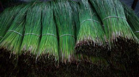 Karpet Jepang tidak wajar sumpit jepang punya rasa karpet yang bisa