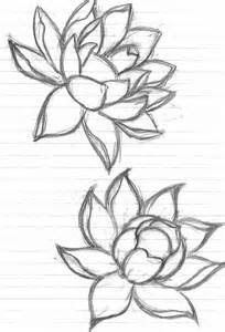 Simple Lotus Eletragesi Easy Flower Drawing Outline Images