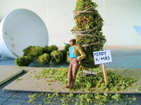 marijuana christmas tree pics arrested after tree turns out to be pot plant 183 high times