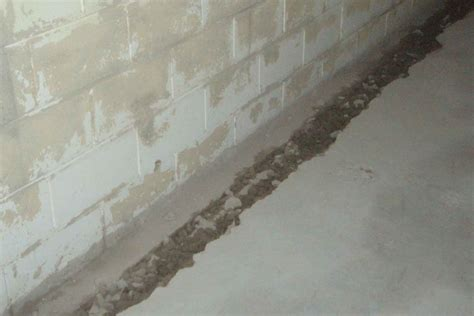 interior waterproofing basement specialist