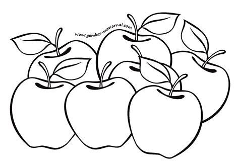 gambar mewarnai buah apel contoh gambar mewarnai