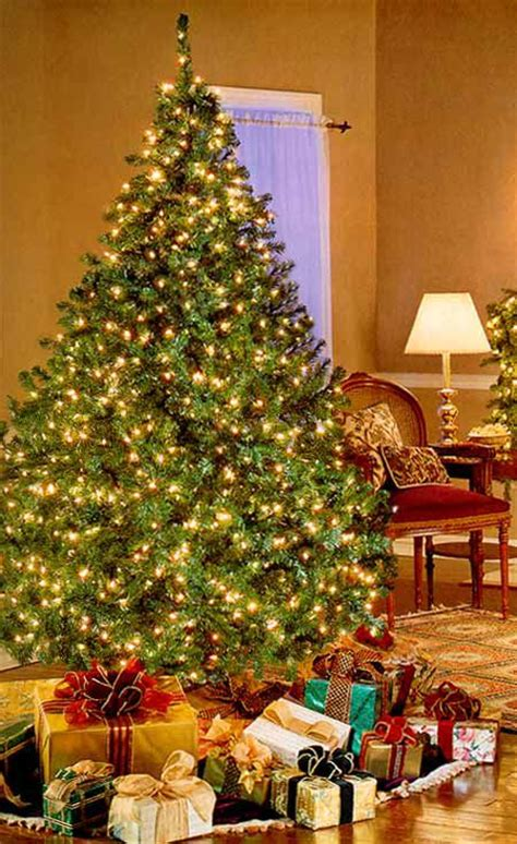 wwwqvccomprelit christmas trees bethlehem lights pre lit tree qvc