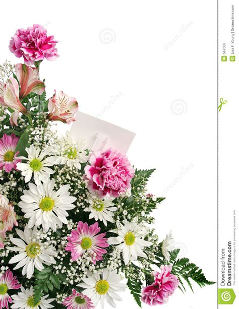Old Borders Gift Cards - flower border gift card royalty free stock photos image 567068