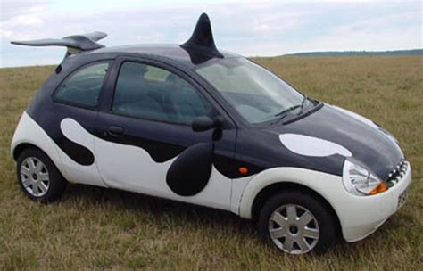Orca Auto by Car Butler Auto S