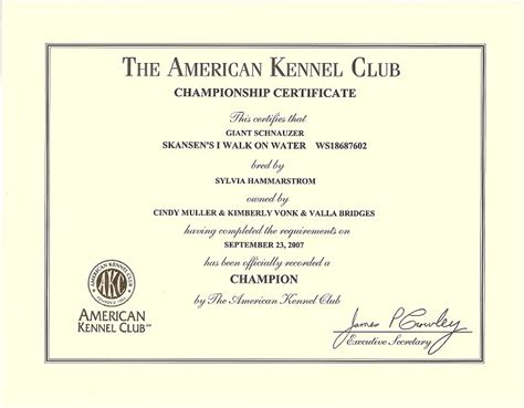 Service Animal Certificate Template by Service Certificate Template Shatterlion Info