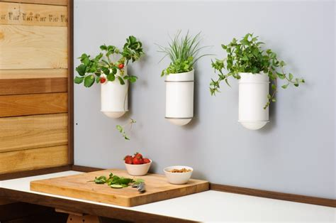 self watering wall planters self watering planters vases 98 00 for the home pinterest