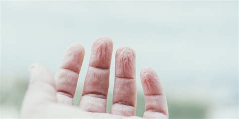 why does skin wrinkle in the bathtub why do fingers and toes wrinkle in the bath huffpost uk