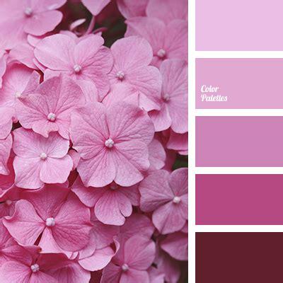 light pink color palette monochrome pink color palette color palette ideas