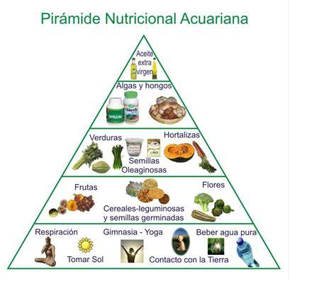 cuantas cadenas troficas hay en esta red la piramide alimenticia de los animales imagui