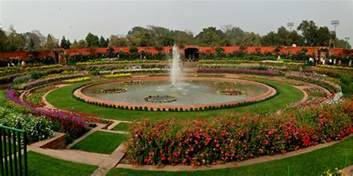 come the gorgeous blooms at the delhi garden