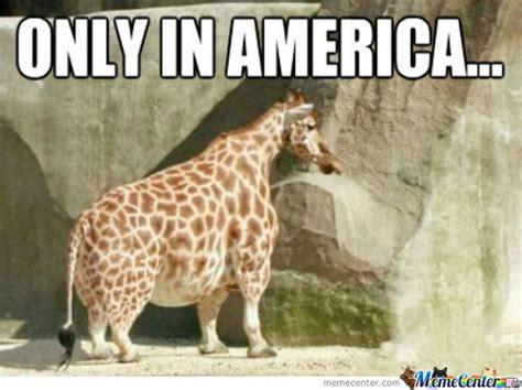 Meme Giraffe - fat giraffe memes best collection of funny fat giraffe