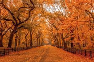 in fall best things to do in the fall in nyc including