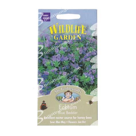 Benih Bunga Mr Fothergills Import Cornflower Blue benih echium blue bedder 200 biji mr fothergills