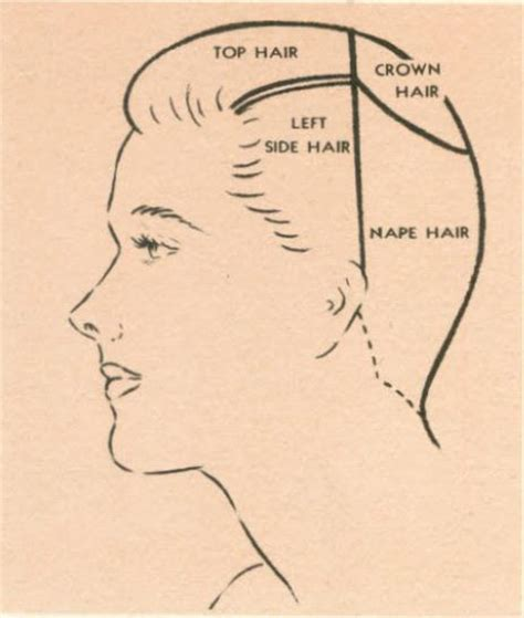 what is sectioning how to part section hair for vintage hairstyles basic