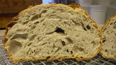 125 hydration starter today s barley mash bread the fresh loaf