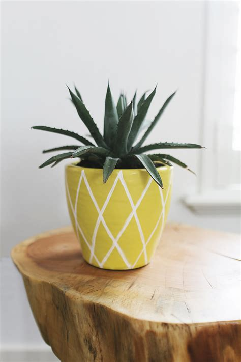 Pineapple Planter by Diy Summer Projects Pineapple Plant Pot Pineapples Are