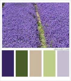 27 best images about lavender paint palettes on color pallets pale oak benjamin