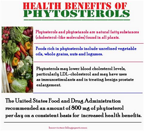 plant sterols lower blood cholesterol levels 8 foods that help lower your cholesterol biggies boxers