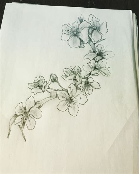 black and white cherry blossom tattoo designs cherry blossom ideas cherry