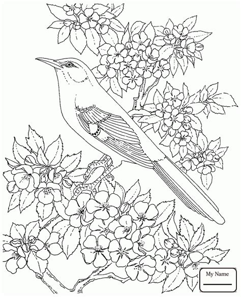luxury bluebonnet flower coloring page artsybarksy