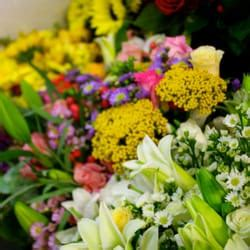 Belva Flower by Belva S Flower Shop 34 Fotos E 15 Avalia 231 245 Es