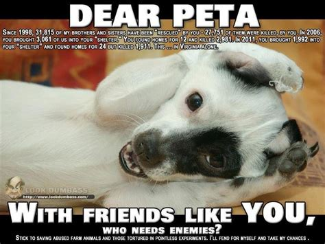 Peta Memes - peta sucks everything and anything pinterest