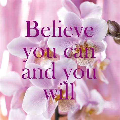 150 best orchid quotes images 11 best images about orchids quotes on end of keep calm and dalai lama