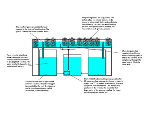 ebb and flow table hydroponics blog healthier food the new ebb and flow