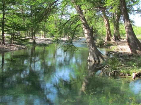 River Bluff Cabins On The Frio by River Bluff Cabins Frio Cground Reviews