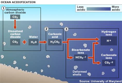 Buffer Credit Formula Chemical Reactions Acidification