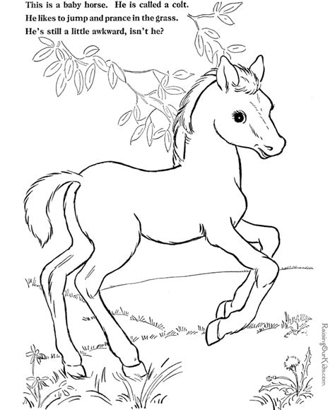Pony Coloring Pages Farm Animals To Print And Color 007 Farm Animal Coloring Pages Printable