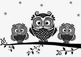 imagenes de buhos en blanco y negro buhos dibujos en blanco y negro buscar con google