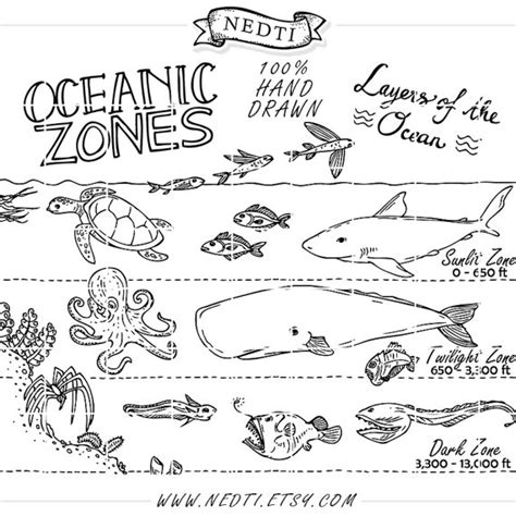 coloring page of world oceans earth science coloring pages bestofcoloring com