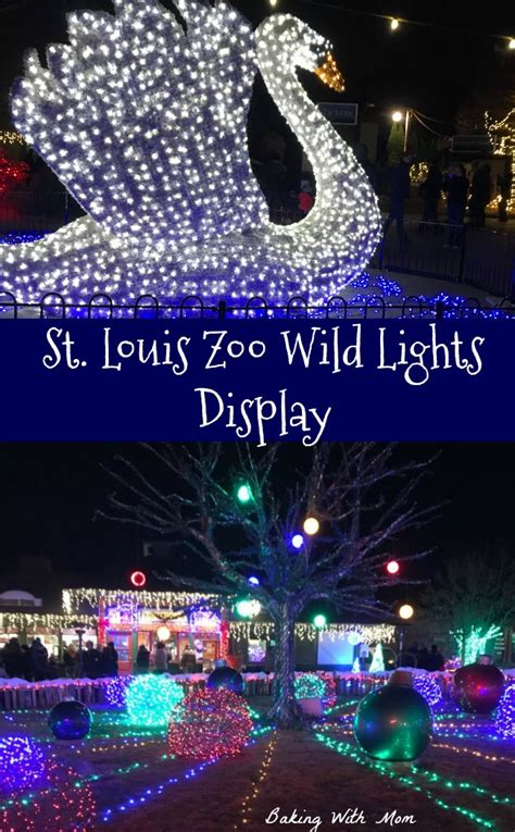 st louis wild lights pin baking with mom