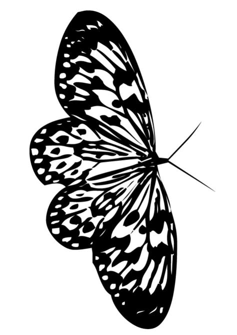 beautiful butterfly coloring pages hellokids com