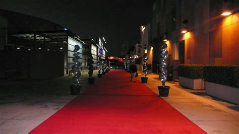 What Is A Red Carpet Event by The Divine Dish 187 2011 187 February