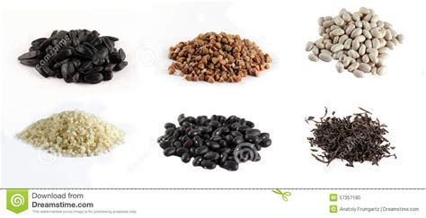 black sunflower seeds benefits corn and beans on white background stock photo image