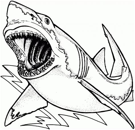 megalodon pages coloring pages