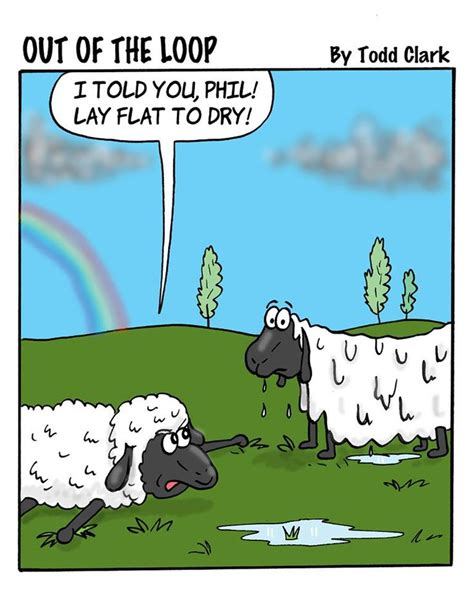 knitting humor 1270 best knitting and knitting humor images on
