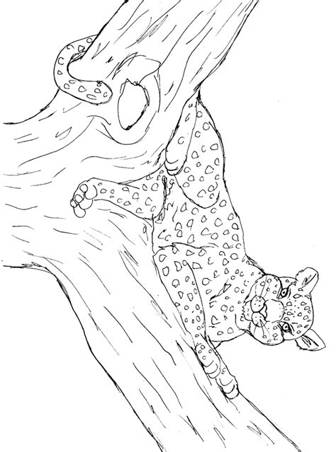 Leopard Coloring Pages Pdf | leopard coloring page animals town animal color sheets