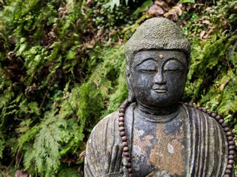 buddhism  religion  god faith  awakening