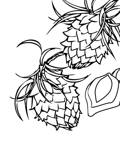 Free Coloring Pages Of Nuts Nuts Coloring Pages