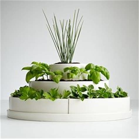 indoor herb planter three tier herb planter and seeds contemporary indoor