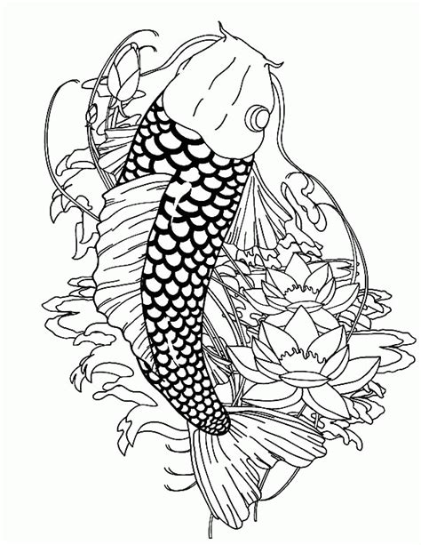 coy fish coloring page coy fish coloring pages coloring home