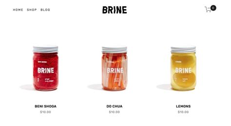 Which Squarespace Template Is Right For You Design Milk Brine Template Squarespace