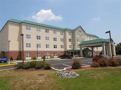 comfort inn dover comfort inn suites dover cape may new jersey