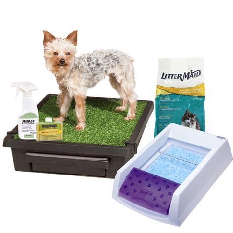 puppy products discount pet supplies sale entirelypets