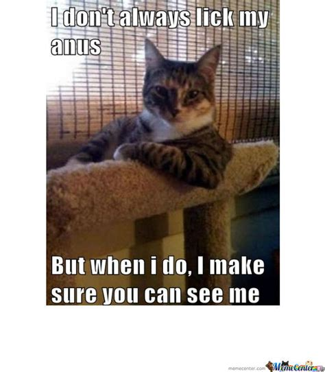 Perverted Memes - most perverted cat in the world by p4n1c meme center