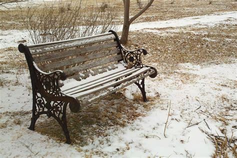 bench in snow free photo bench park snow winter grass free image